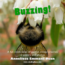 """Buzzing"""