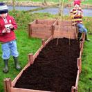 Chidren's Garden Plot