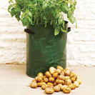 potato-planter-small-011