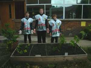 Planting the Vegetables