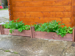 This salad bed is great for growing winter herbs and bulbs.