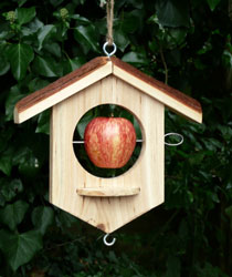 apple_feeder_med