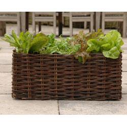 Willow-salad-planter2