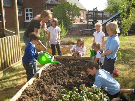 Primary Schools In Welwyn Garden City