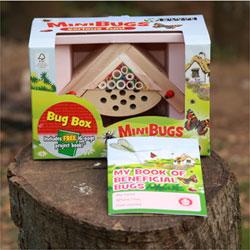mini bug house | Gardening with Children