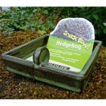 Hedgehog snack feeding bowl