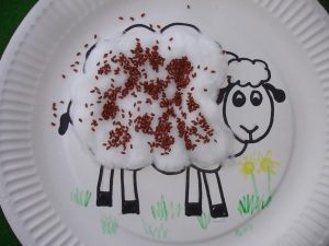 Cress Cotton Wool Lamb