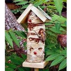 ladybird_house_m-01[1]